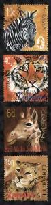 safari-verticle-9890-1-17-11